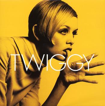twiggy_whenithin_101b