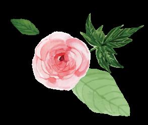 rose1_cupmode-stile