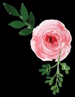 rose7_cupmode-stile